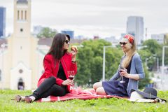 Young girls are enjoying the afternoon picnic Stock Photos