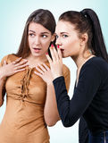 Young girls gossiping some secret Royalty Free Stock Photo