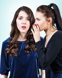 Young girls gossiping some secret Royalty Free Stock Images
