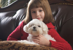 Young Girls with Her Maltese. Young Girls Poses with Her Maltese Dog Stock Image