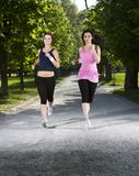 Young girls jogging in the park Royalty Free Stock Images