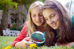 Young girls looking at flower. Young girls investigating a flower with a magnifying glass Stock Photo