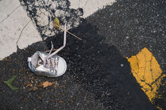 Young girls lost shoe in street Stock Image