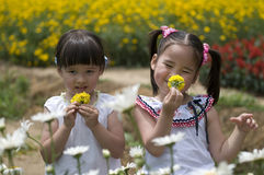 Young girls outdoor Royalty Free Stock Photo