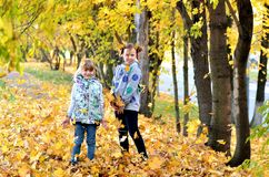 Young girls play outdoors in the autumn season royalty free stock images