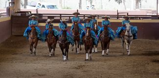 Group of female riders in blue dress stock photography