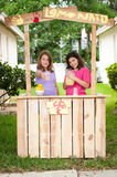 Young girls selling lemonade. Two young girls selling lemonade. One holding out a cup toward customers while the other holds the pitcher of lemonade Stock Image