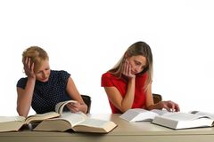 Young girls studying Royalty Free Stock Photography