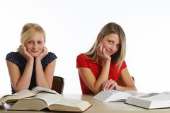 Young girls studying Royalty Free Stock Images