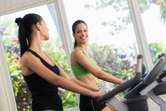 Young girls training on fitness bikes in gym Royalty Free Stock Images