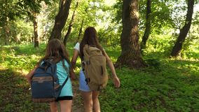 Young girls travelers with backpacks run through the thickets in the forest. Hiker woman walks in the forest. happy stock footage