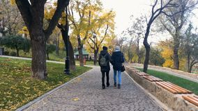 Young girls are walking in the autumn park. Autumn city park stock video footage