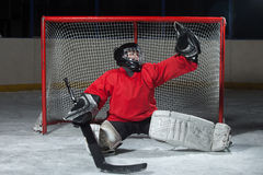 Young Goalkeeper Catching A Puck Stock Image