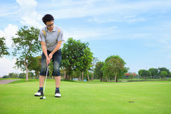 Young golfer putting. On green Royalty Free Stock Images
