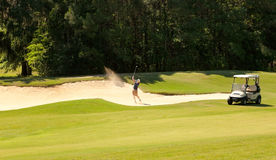 Young golfer in Sand Bunker Royalty Free Stock Photography