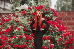 Young gothic girl with red lips in black dress on summer background. Redhead pale model on background of roses bush. Stylish woman. Fashionable gothic clothes stock image