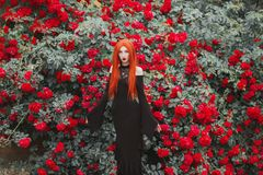 Young gothic girl with red lips in black dress on summer background. Redhead pale model on background of roses bush. Stylish woman. Fashionable gothic clothes stock photo