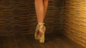 Young graceful ballerina standing en pointe stock video footage