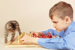 Young grandmaster with striped kitten plays chess. Royalty Free Stock Photo