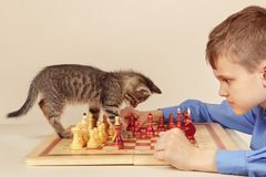 Young grandmaster with tabby kitten plays chess. Royalty Free Stock Photos