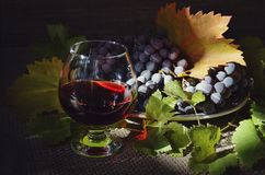 Dionysus ` gifts.still life with grapes vector illustration