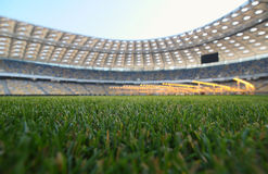 Young grass in a football stadium Royalty Free Stock Image