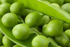 Young grean peas background stock images