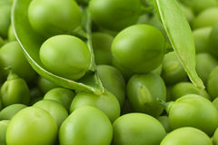 Young grean peas background stock photography