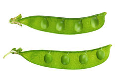 Young grean peas on white stock photography