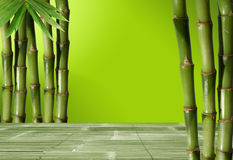 Young, green bamboo in the background boke Stock Photo