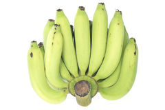 Young green banana isolated. Royalty Free Stock Image