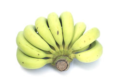 Young green banana isolated. Royalty Free Stock Photos
