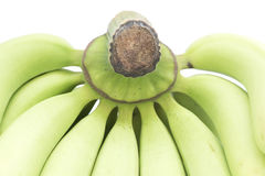 Young green banana isolated. Stock Photography