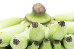 Young green banana isolated. Stock Image