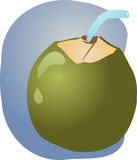 Young green coconut Stock Images