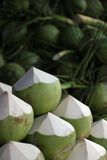 Young Green Coconuts. Piled up in fruit market Royalty Free Stock Image