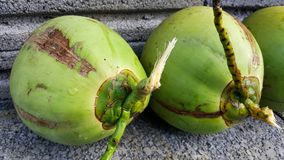 Young green coconuts with nutrient, health benefits, dietary fib. This is young green coconuts with nutrient, health benefits, dietary fiber and high Stock Photos