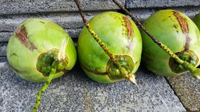 Young green coconuts with nutrient, health benefits, dietary fib. This is young green coconuts with nutrient, health benefits, dietary fiber and high Royalty Free Stock Photography