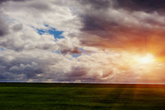 Young green fields, dark Moody sky. Royalty Free Stock Image