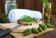 Young green fir cones on the wooden background. Stock Photos