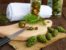 Young green fir cones on the wooden background. Royalty Free Stock Image