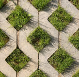 Young green grass grows from the concrete structur Stock Photo