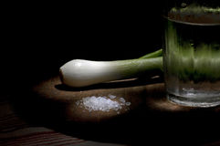 Young green onion, salt and misted glass Stock Photography