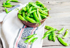 Young green peas in the pod, earthenware dish, rustic background. Raw Royalty Free Stock Images