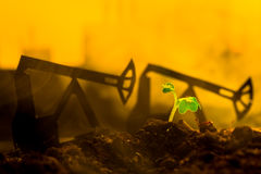 Young green plant in soil on background oil rocking machine.  Stock Image