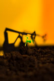 Young green plant in soil on background oil rocking machine.  Royalty Free Stock Images