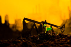 Young green plant in soil on background oil rocking machine.  Stock Photography
