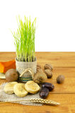 Young green wheat and dried fruit Royalty Free Stock Image