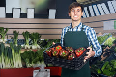 Young grocery worker at local market Stock Images