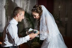 Young groom and bride Royalty Free Stock Image
